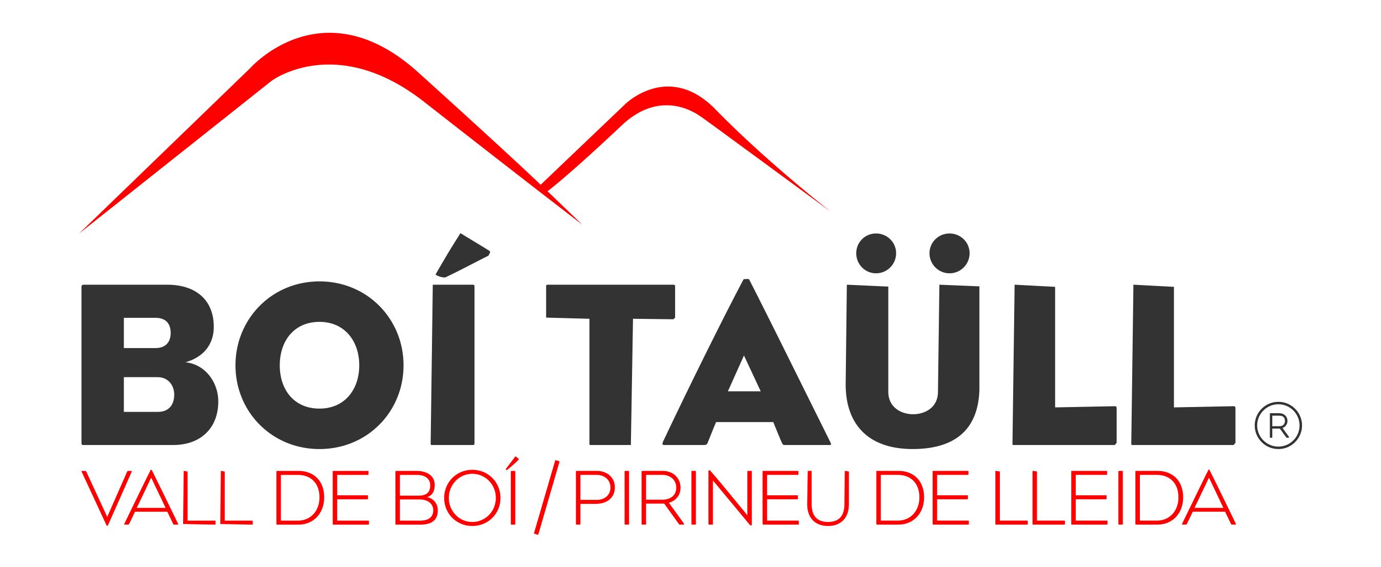 LogoBoiTaul2013